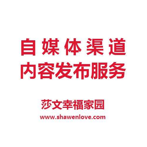 自媒体渠道内容发布服务 头条 百家 搜狐等自媒体渠道发布